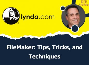 FileMaker: Tips, Tricks, and Techniques