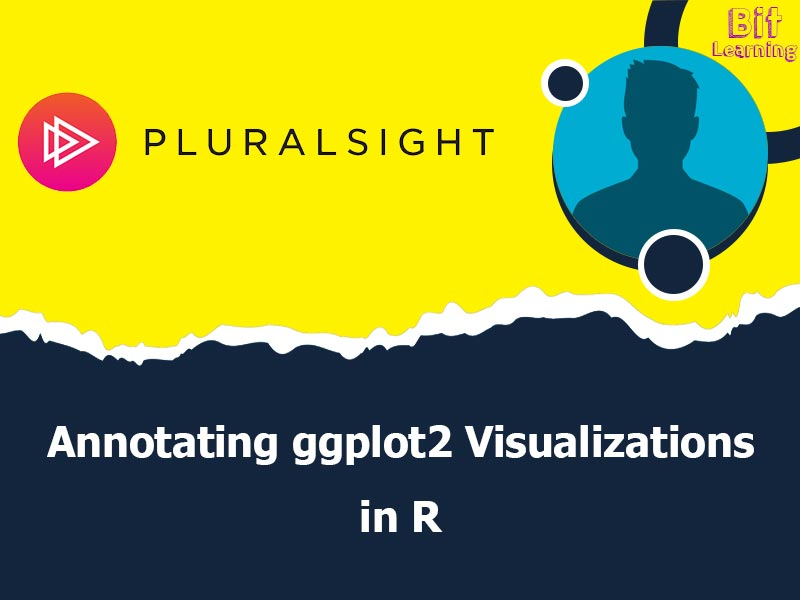 Annotating ggplot2 Visualizations in R